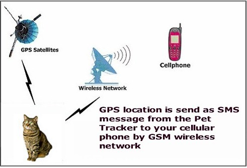 how to find lost mobile phone location online